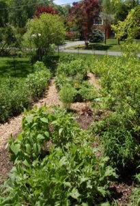 rcla_pollinator_garden_0516